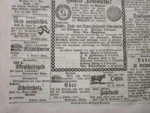 Scheiterholzverkauf 1872