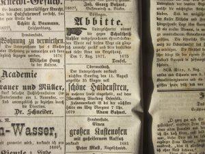 Grenzer 11.08.1877 Heidelbeerenstreuverkauf