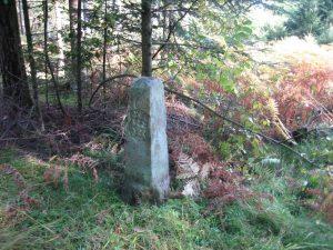 Forstgrenzstein von 1060, württembergische Seite