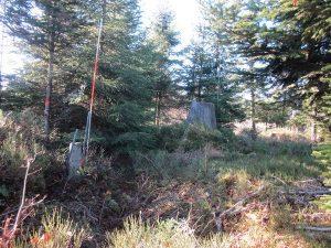 Grenzstein von 1777 auf dem Kienberg-Gipfel