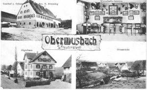 Ansichtskarte Ochsen 1910