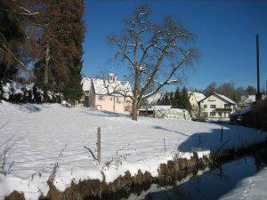 Rathaus Rückseite im Winter