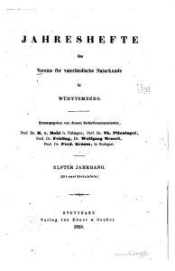 Erdbeben im Schwarzwald, ein Buchbericht