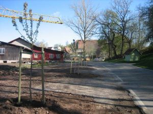 Baumreihe am ehemaligen Holzlagerplatz