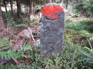 Stein Nr. 13