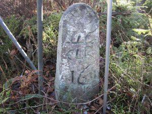 Grenzstein Nr. 16 von 1747 auf der Kienberg Hochfläche