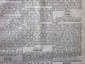 Die Heidelbeerstaude 1877