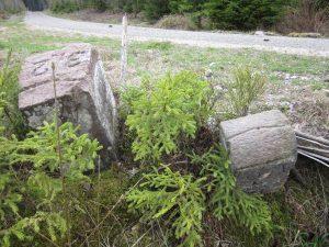 Forstgrenzstein Gallushütte