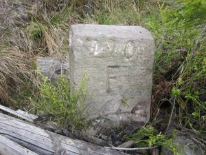 der Stein daneben mit Nr. 99