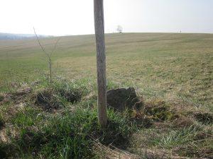erster Grenzstein in der Wiese Richtung Tannenbühl