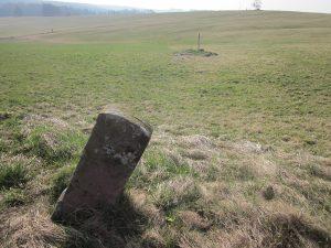 zweiter Grenzstein in der Wiese zum Tannenbühl