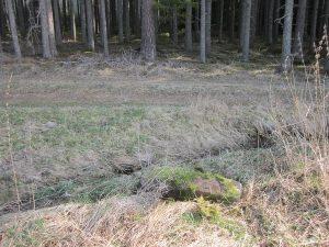 umgestürzter Grenzstein am Waldtrauf und Bach