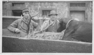 Ernst Schneider und Emil Hamma mit  Hirsch