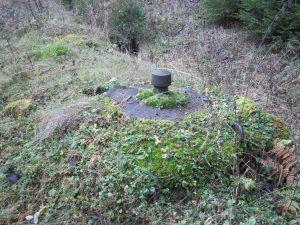 Brunnenstube Harzhüttebrunnen