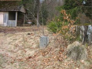 Grenzstein bei der Hütte in der Kälberbronner Wiese