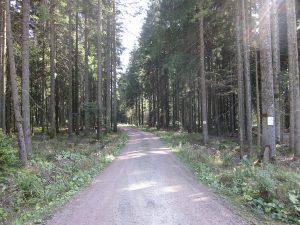 Wäldlesweg