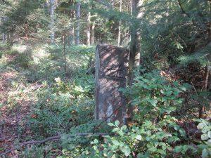 Stein mit Obermusbacher Lehenshof Hausmarke