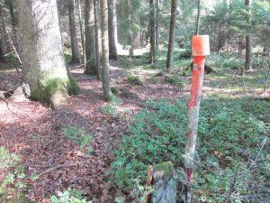 Grenzstein mit roten Hilfspfahl