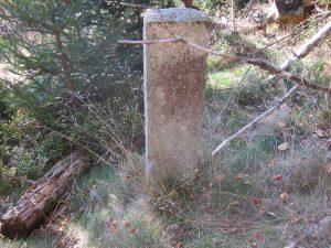 Grenzstein im Glattbereich