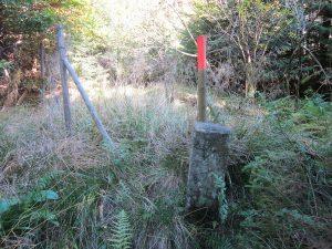 Der nächste Stein direkt an der Glatt neben einen Drahtzaun