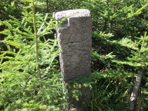 ein weitere Stein vor der Glattquelle. Nr. muss noch entschlüsselt werden.