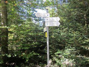 Schwarzwald Wegweiser Dachsbau