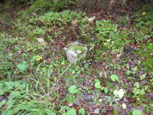 Im Erdboden versunkener Stein