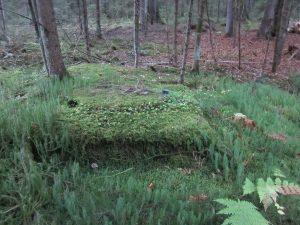 Brunnenstubendeckel Krähenhardtbrunnen