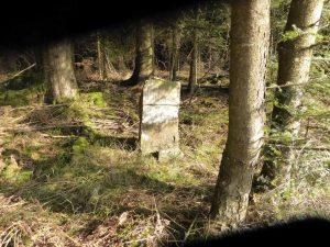 Forststein auf der Bengelbruck-Seite
